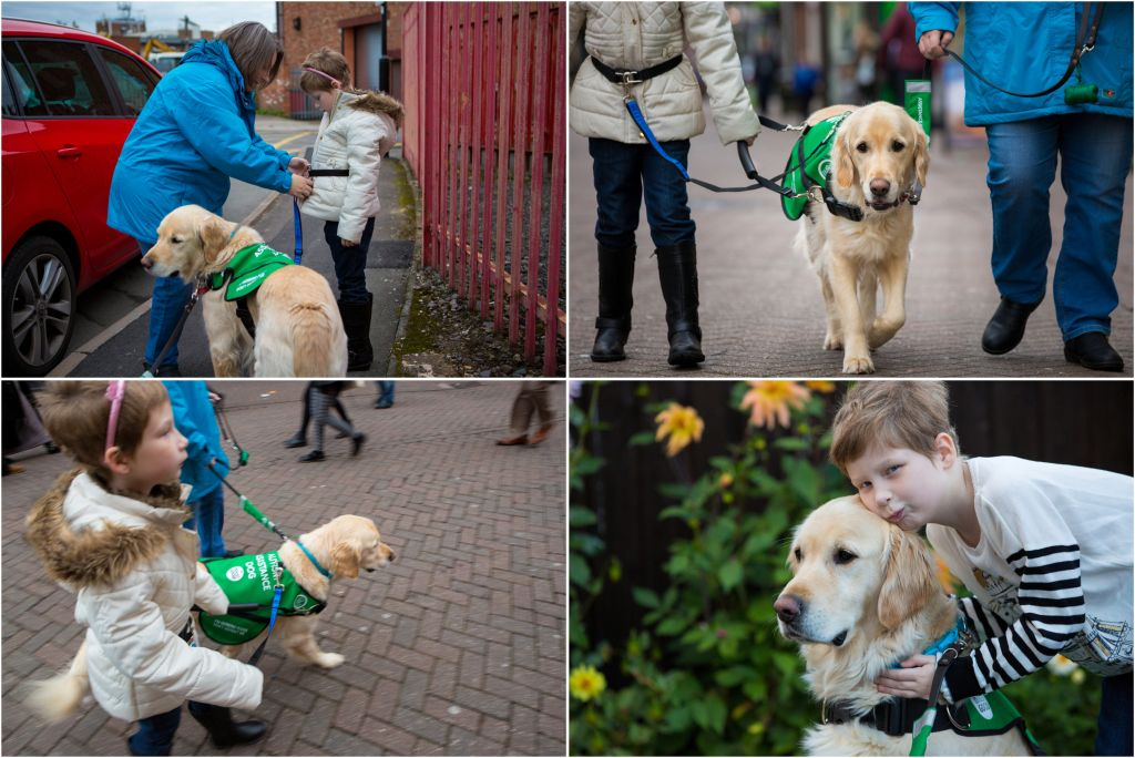 Dogs for Good assistance dog helping a young girl around town.