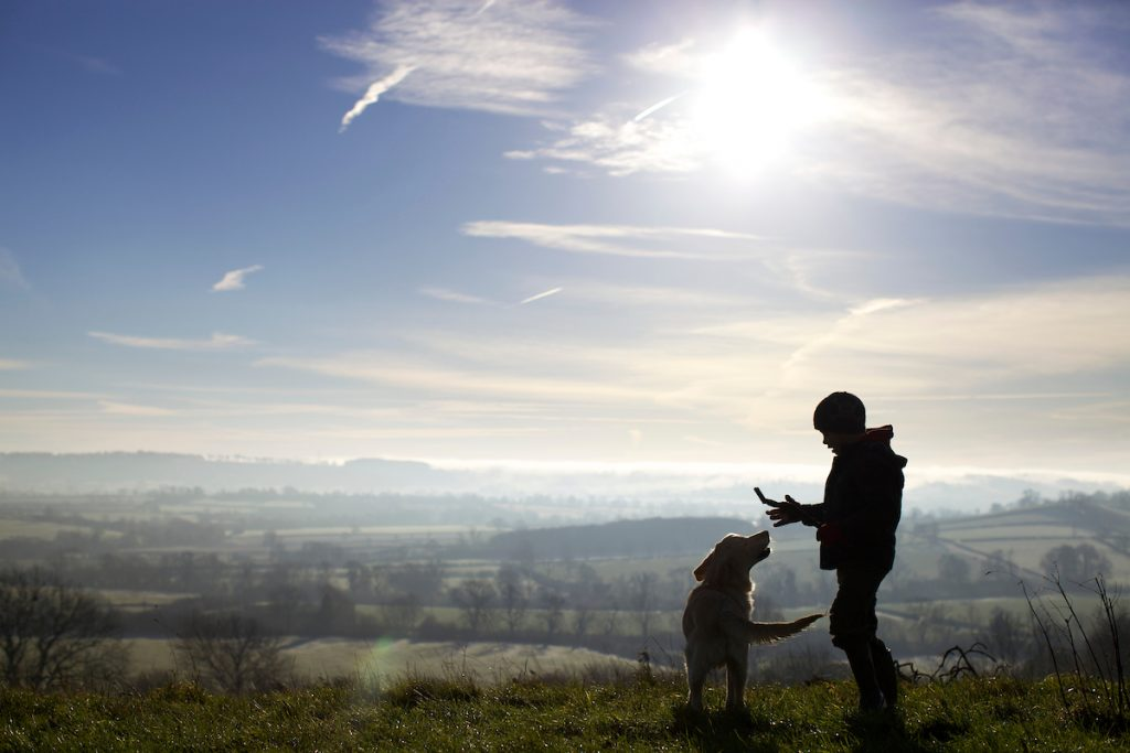 boy and dog on a hilltop on a sunny winters day